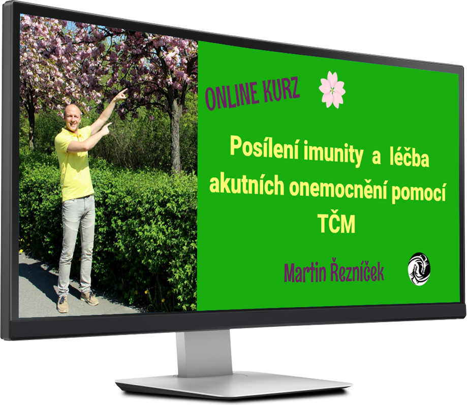 online kurz Posílení imunity podle TČM